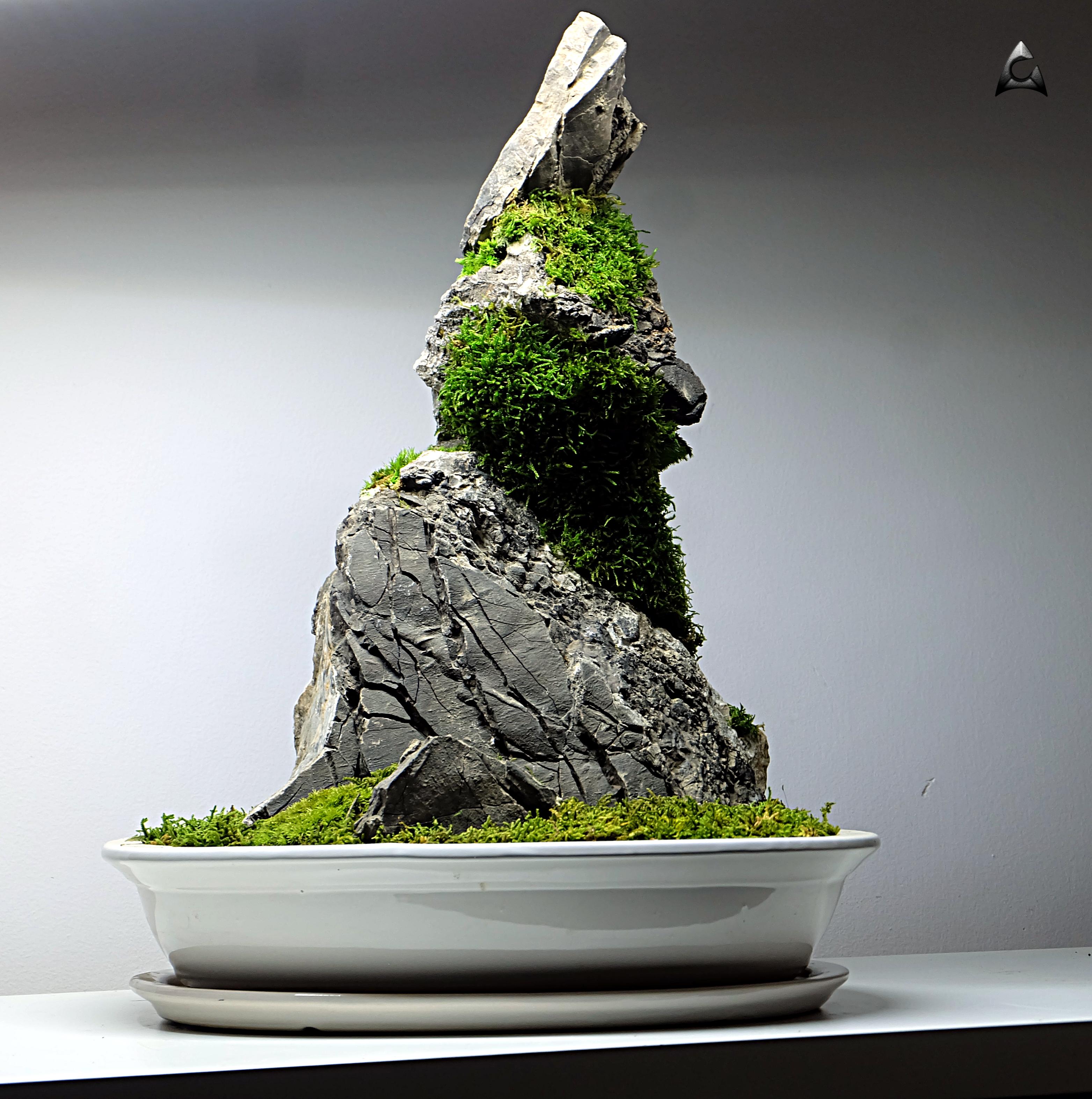 Koke-Bonkei - japońska sztuka5x