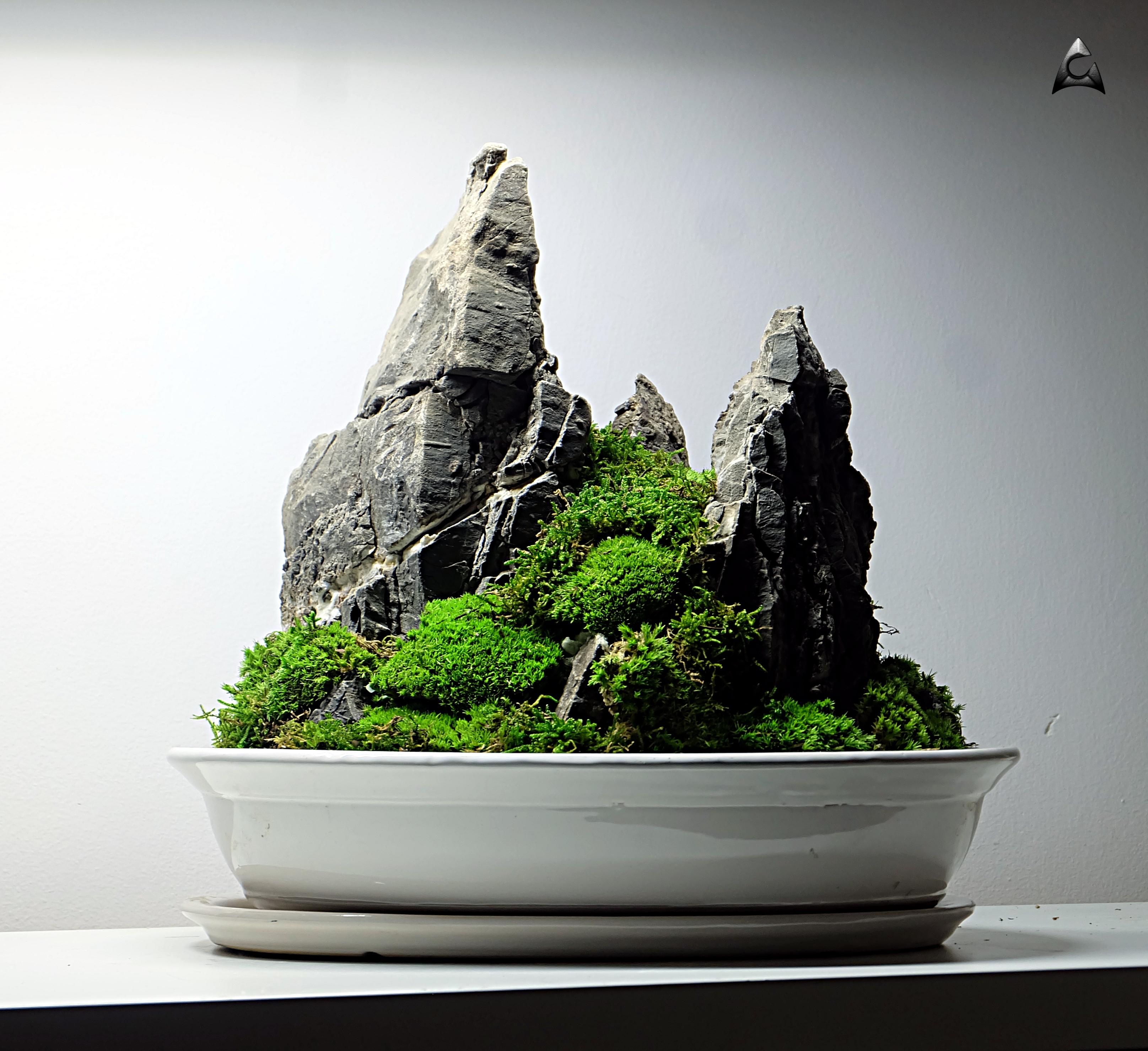 Koke-Bonkei - japońska sztuka6x