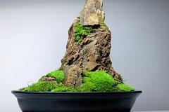 Koke-Bonkei - japońska sztuka4x