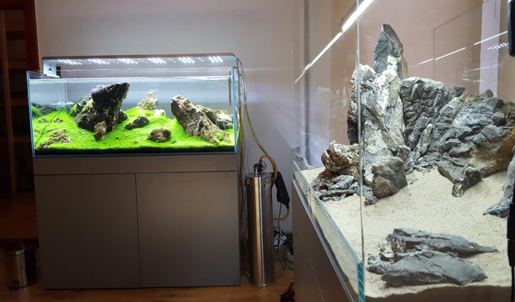 Aquaman Nature Studio aranżacje do akwarium roślinnego.