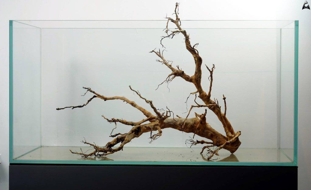 roots Naturalne korzenie do akwarium