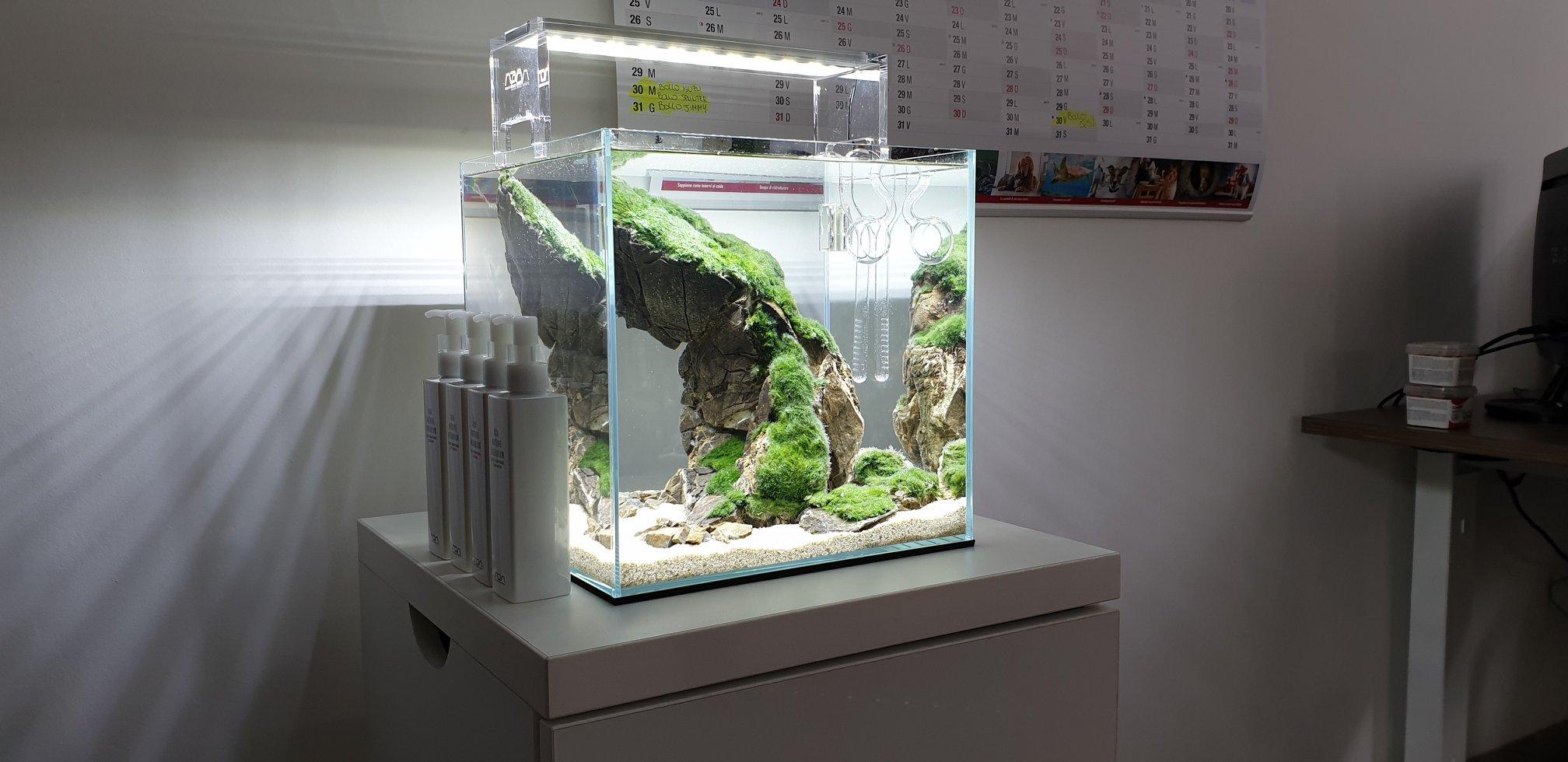 nano aquarium aquaman nature studio
