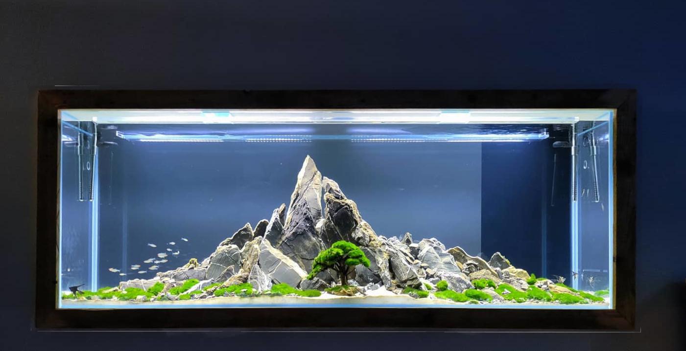 nasze realizacje akwarium