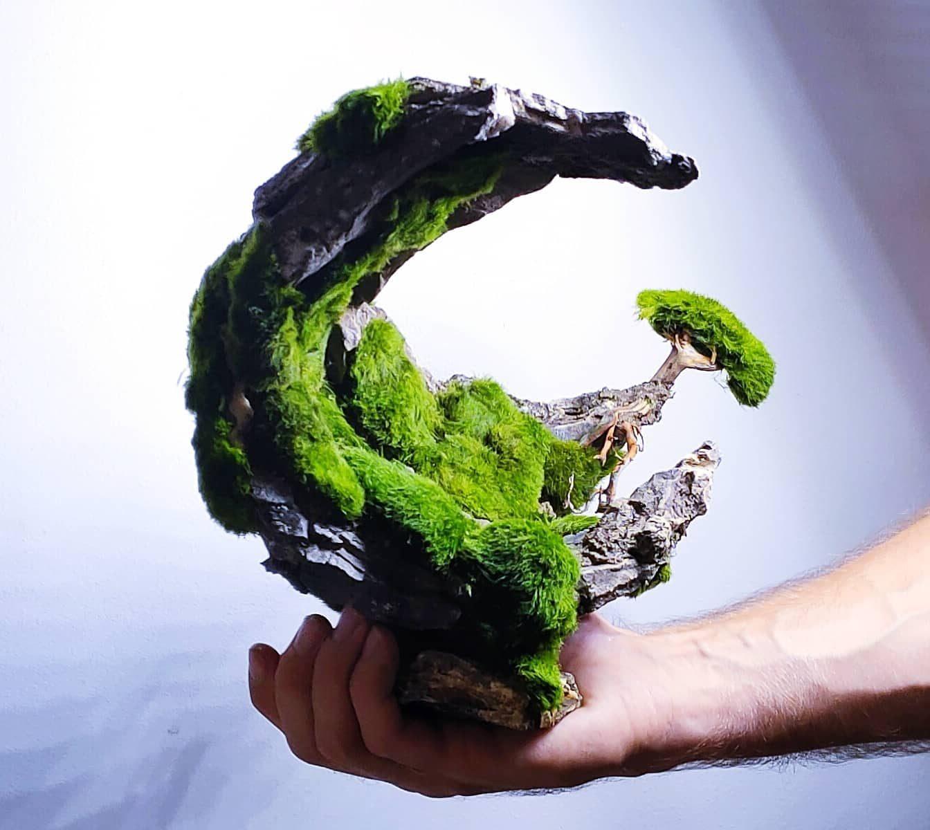 Private customer project for aquarium